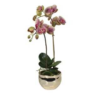 Faux Pink and Green Orchid Phalaenopsis Plant in Gold Pot