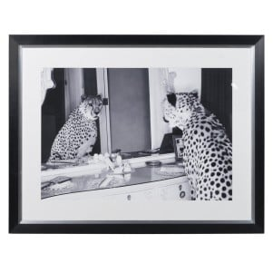 Black and White Cheetah in Mirror Picture